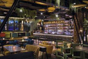 Verdi-and-trone-grande.-the-embodiment-of-bold-design-ideas-restaurateurs